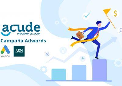 Campaña online Adwords Search Acude